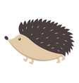 cute hedgehog cartoon flat sticker or icon vector image vector image