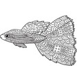 doodle zentangle fish coloring page with marine vector image vector image