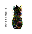 pineapple colorful sketch for your design vector image