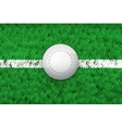White line and hockey ball on Sport grass field vector image vector image
