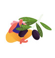woman farmer hold branch with ripe olives vector image