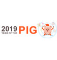 2019 banner drsign with pig snout for greeting vector image vector image