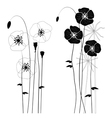 collection wild plant poppy vector image vector image