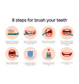 dental hygiene infographic oral healthcare guide vector image