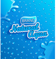 fresh natural water banner with drops and splash vector image vector image