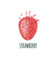 hand drawn strawberry on white background vector image
