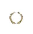 laurel wreath computer symbol vector image vector image