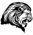 lion head black white vector image