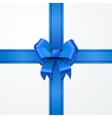 Bright blue bow-knot with tape on white vector image