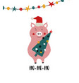 christmas card with funny pig vector image