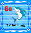 flashcard letter s is for shark vector image vector image