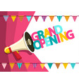 grand opening symbol with flags and megaphone vector image vector image