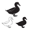 hand drawn duck set vector image