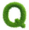 capital letter q from grass on white vector image vector image