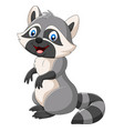 cartoon happy raccoon on white background vector image vector image