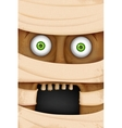 Face of Mummy vector image vector image