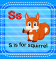 flashcard letter s is for squirrel vector image vector image