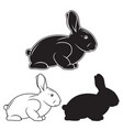 hand drawn rabbit set vector image