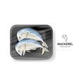 steamed mackerel black foam tray wrapped vector image vector image