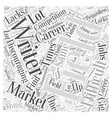 writer market Word Cloud Concept vector image vector image