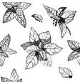 black and white seamless pattern with basil leaves vector image vector image