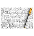 forest wild animals doodle set vector image