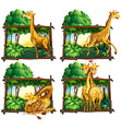 Four scenes of giraffes in the woods vector image vector image