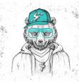 hipster animal bear dressed in cap like rapper vector image