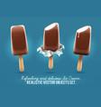 ice-cream chocolate vanilla vector image vector image