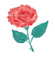 oil painted rose vector image vector image
