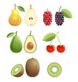 set of colorful fruit icons pear mulberry vector image vector image