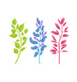 small thin branches of wild natural plants set vector image