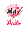 background with manicure tools vector image
