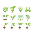 collection of plant logo icon template vector image