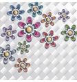 Collection of the colorful flowers vector image vector image
