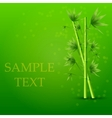 creative bamboo background Eps10 vector image