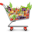 Shopping Basket Of Fresh Fruits And Vegetables vector image vector image