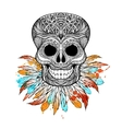 Tribal Skull With Feathers vector image vector image