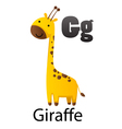 Alphabet G with giraffe vector image