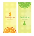 Banners with stylized citrus fruit and splashes vector image
