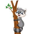 cartoon raccoon climbing on tree vector image vector image