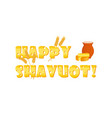 jewish holiday of shavuot greeting banner vector image