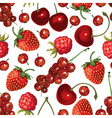 redberry pattern vector image