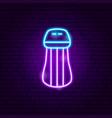 salt neon sign vector image