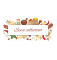 spices collection with lettering banner vector image