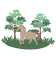 stallion galloping in park horse in forest vector image vector image