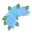 beautiful bouquet with blue asters and leaves vector image vector image