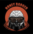 honey badger eyeglasses vector image