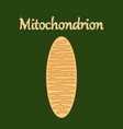 icon in flat style mitochondrion vector image vector image
