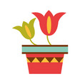 potted flowers ornate decoration flat icon vector image vector image